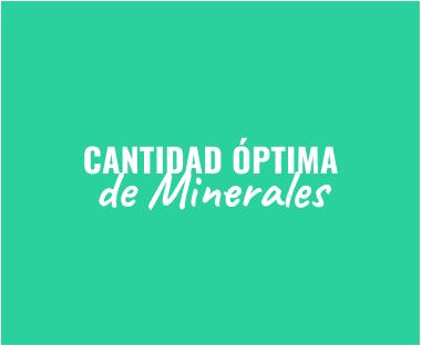 cantidad optima de minerales